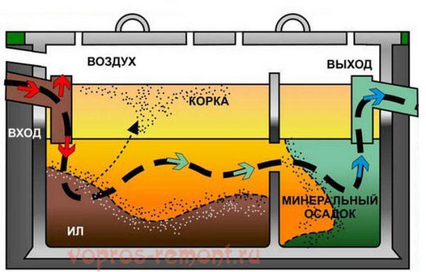 Принцип работы бактерий для септика