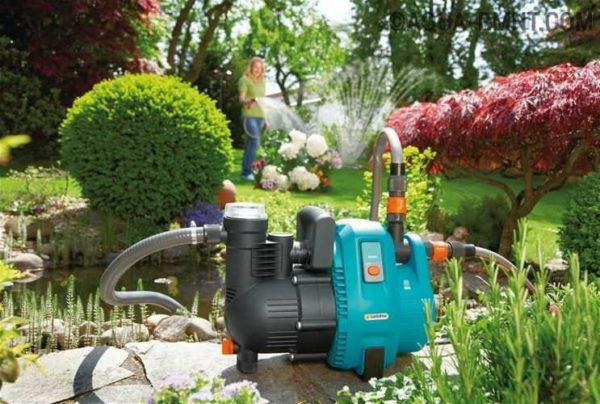 Удобный полив огорода с надежным помощникомогородника – поливочным насосом