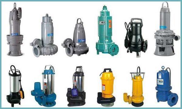 Разнообразие фекальных агрегатов